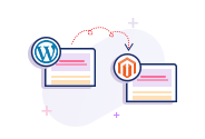 Convert & Migrate Wordpress to Magento Website