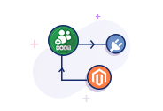 Customers Online Magento Plugin Integration