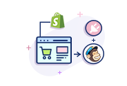 Mailchimp Plugin Integration To Shopify Store