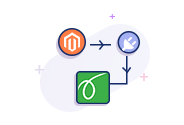 Springbot Magento-1 Plugin Integration