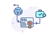 SSL installation Service for Wordpress Website