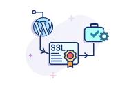WordPress SSL Installation & Configuration Service