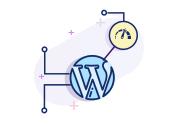 Speed Optimization Of Your WordPress Website