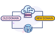 WordPress Migration Service To New Domain Or Hosting